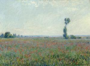 Monet, klaprozen