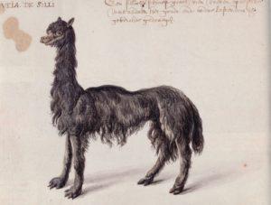 Post_Llama